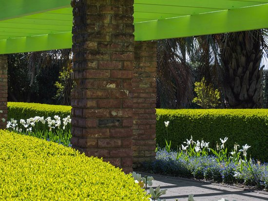 Wanganui, Nueva Zelanda: THAT is a bright lime green!