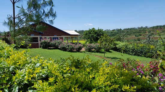 Tanzanice Farm