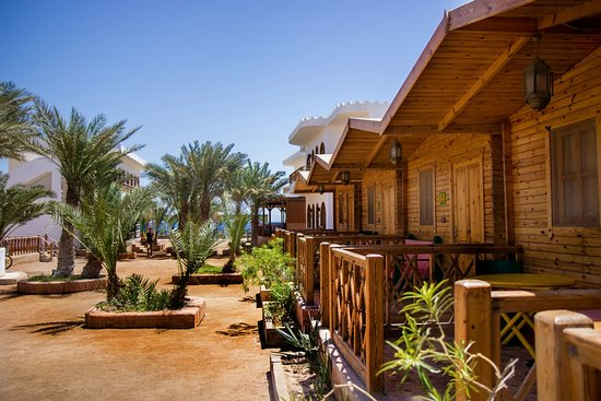 ‪فندق شمس: Bungalows at Shams Hotel‬
