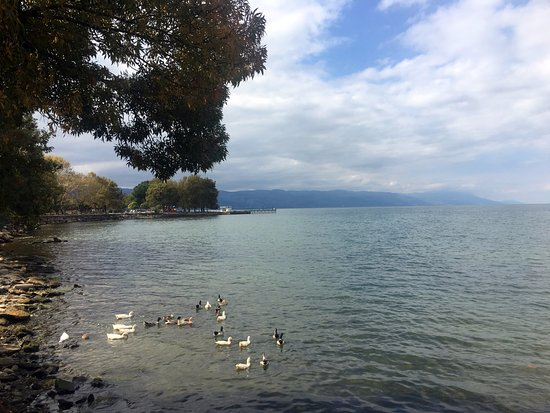 Iznik : İznik Gölü