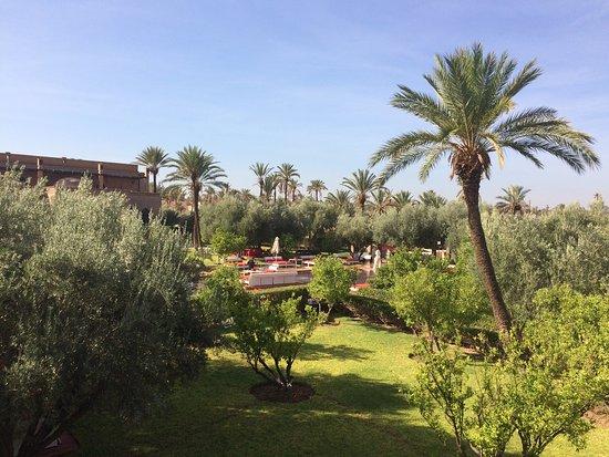 Murano Resort Marrakech: photo9.jpg
