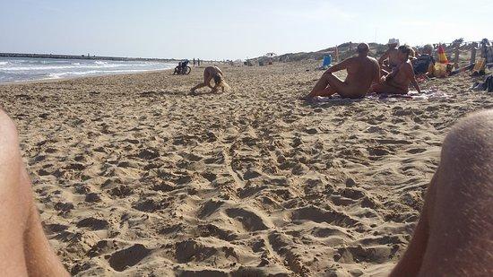 Playa de Guardamar: PHOTO_20161017_160337_large.jpg