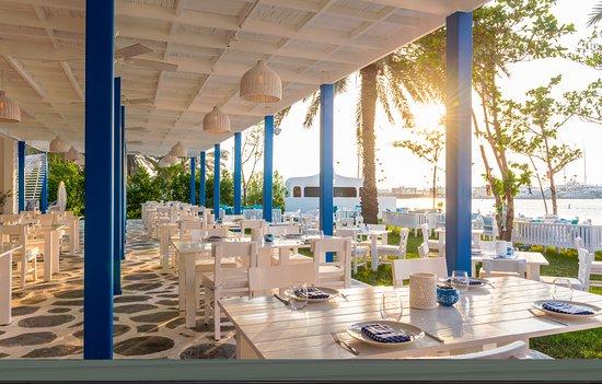 Рыбный ресторан дубай марина долгосрочная аренда квартиры в дубае