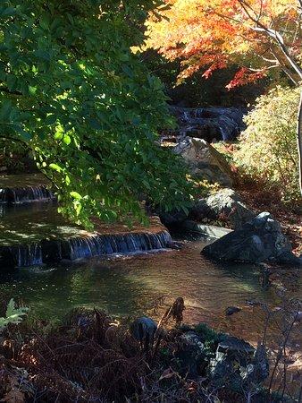 Montreal, Canadá: Japanese Garden