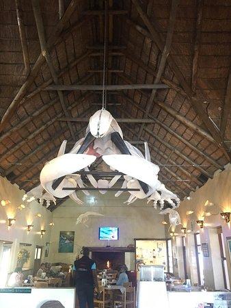 Kleinbaai, แอฟริกาใต้: photo1.jpg