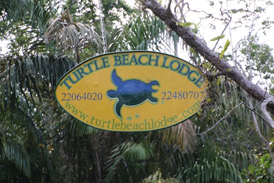 Turtle Beach Lodge Costa Rica Review