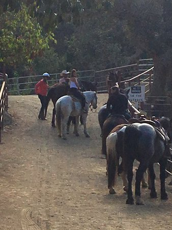 โกลตา, แคลิฟอร์เนีย: Horseback riding with the wedding party