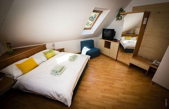 Mikulov, Tsjekkia: V penzionu Proneco jsou tři podkrovní pokoje.