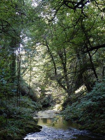 Lydford, UK: Landscape.