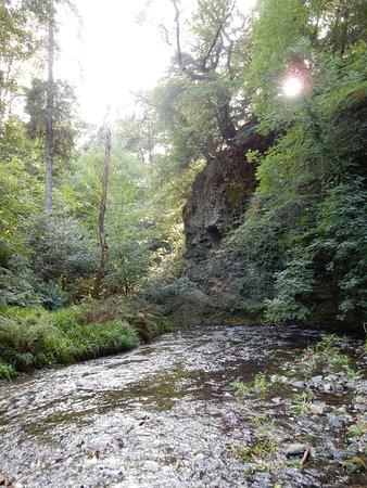Lydford Gorge.