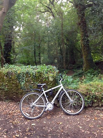 Lostwithiel, UK: Cycling round Lanhydrock