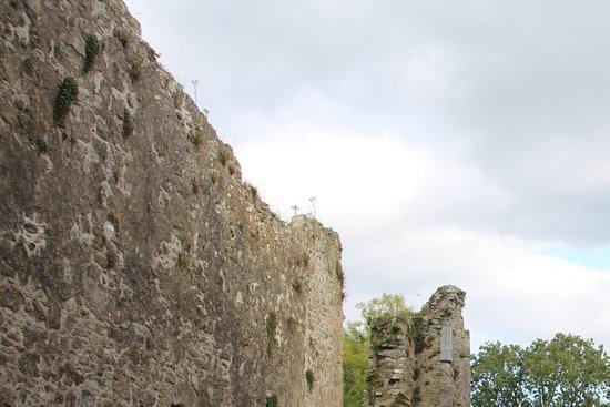 Thomastown, Irlanda: Part of the wall