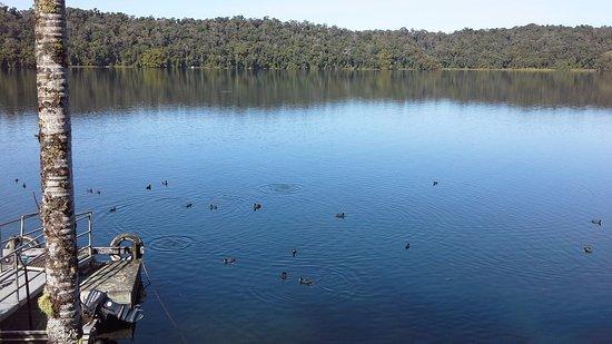Yungaburra, Australia: View from Teahouse