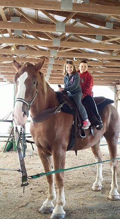 Millersburg, Огайо: Riding the big horse