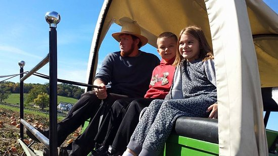 Hershberger Farm & Bakery: Wagon ride