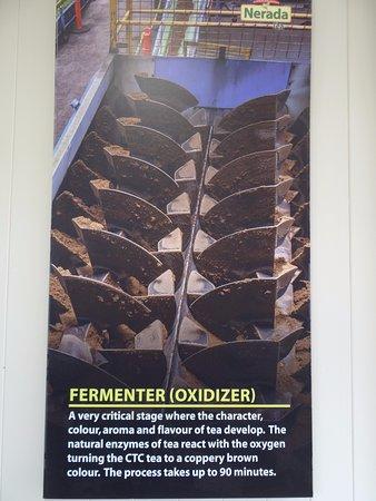 Malanda, Australia: Fermenter