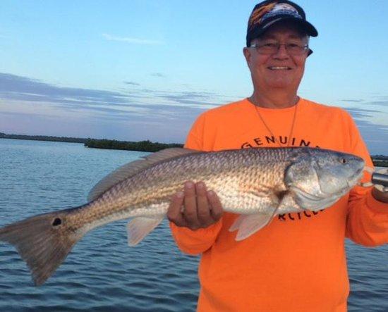 Edgewater, Floride : Mosquito Lagoon Redfish