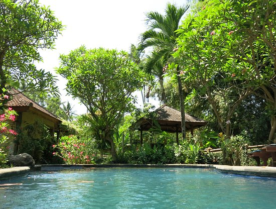 Saraswati Holiday House: Gardenview from the pool