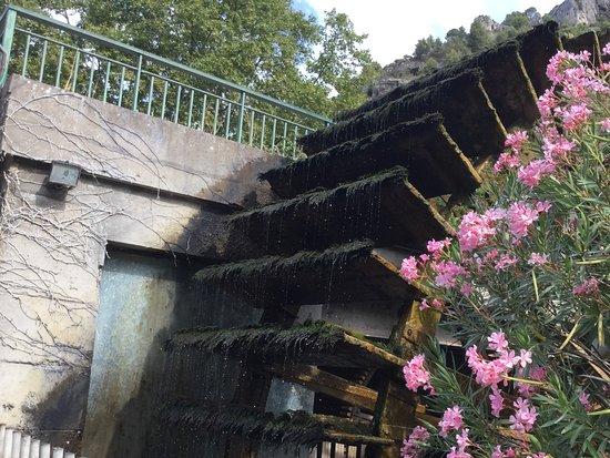 Fontaine de Vaucluse, فرنسا: Bord de la Sorgue