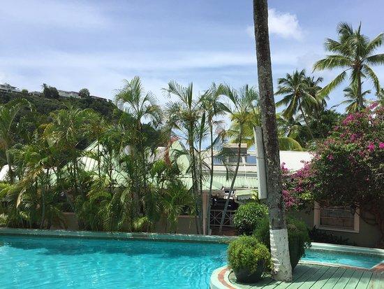 bahía de Marigot, Sta. Lucía: Fabulous refreshing pool with amazing views.