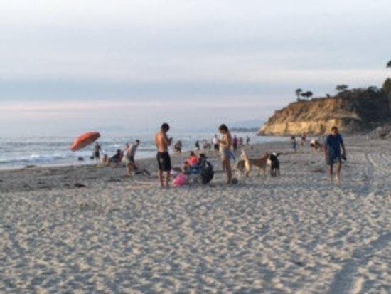 Bilde fra Del Mar