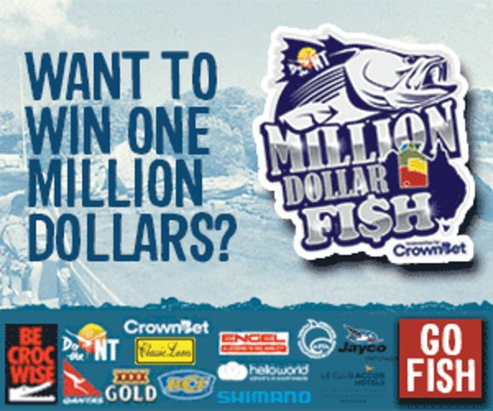 Melville Island, Australia: Million Dollar Fish