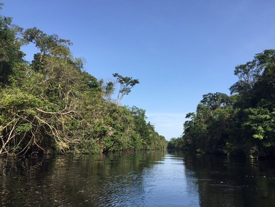 Tortuguero National Park Canal