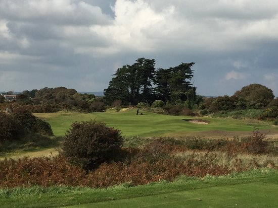 County Louth Golf Club: photo4.jpg