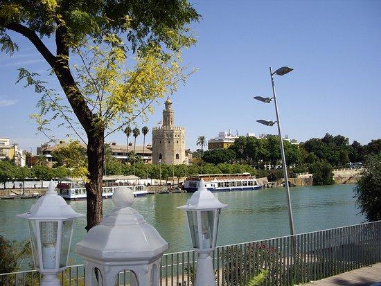 Kiosco de las Flores: View from terrace.