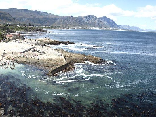 Hermanus, Sudáfrica: vista del puerto