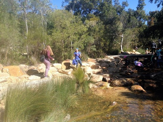 Rio Tinto Naturescape Kings Park : Lots of rocks to climb and shallow water to play in.