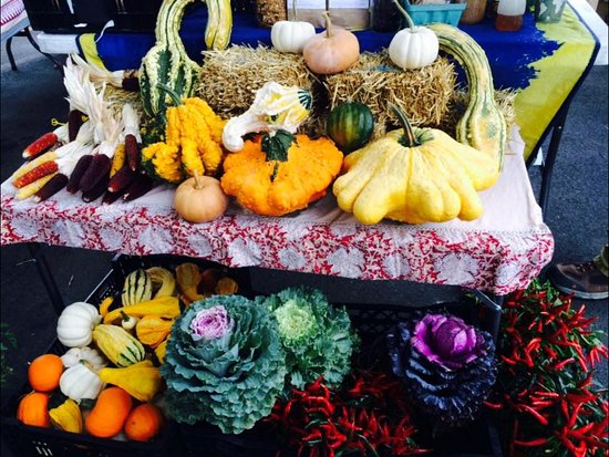 Morgantown Farmers Market : You will always find something colorful...