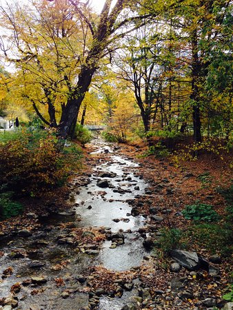 Williamstown, MA: The babbling brook during the fall season