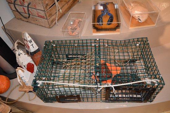 ลือเนนบูร์ก, แคนาดา: lobster trap