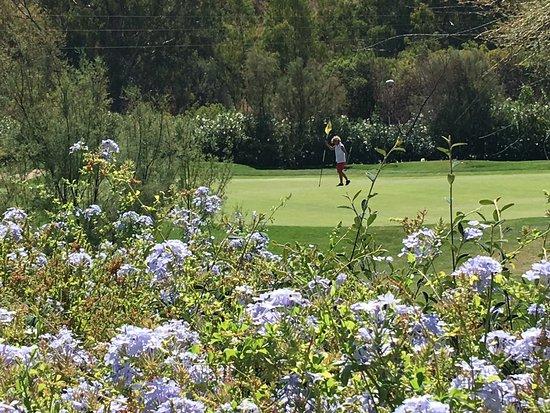 The Westin La Quinta Golf Resort & Spa : golfhul