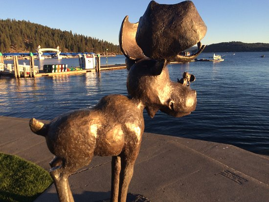 Coeur d'Alene City Park and Independence Point: Mudgy the local icon in the park