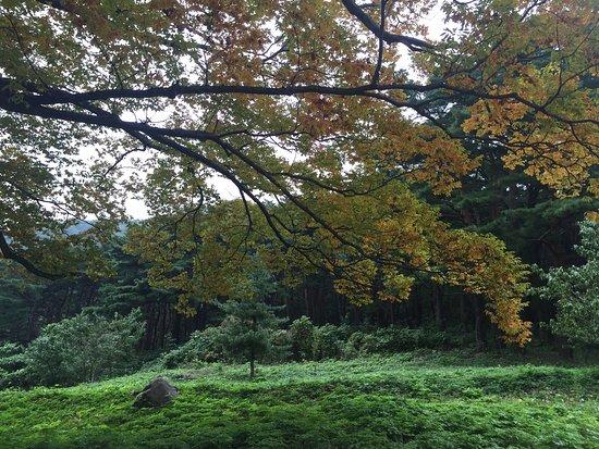 Pohang, Corea del Sur: photo5.jpg