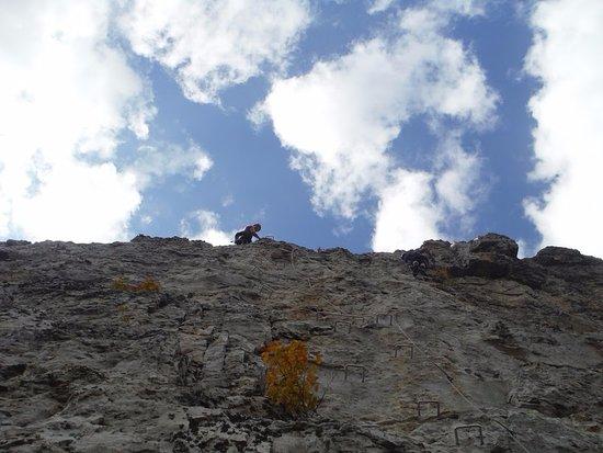 Circleville, WV: optional super fun climb to the top!