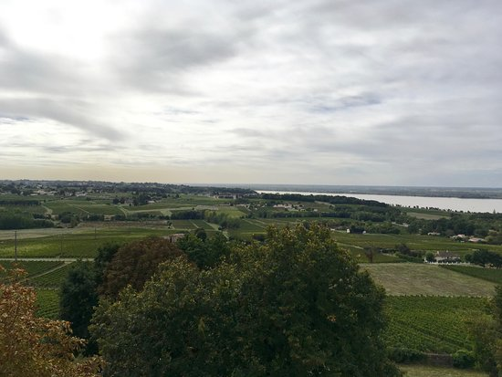 Plassac, France: La Gironde and the vineyards around the castle