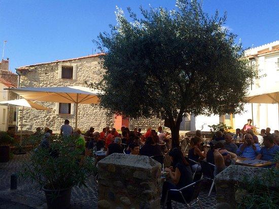 Ille-sur-Tet, Fransa: Sous l'olivier !