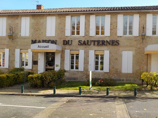 Sauternes, Frankrike: Where to buy some local wine