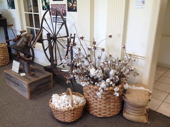 Brownsville, TN: Museo del cotone
