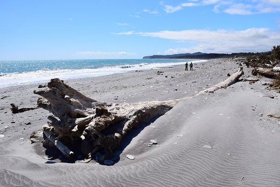 Westland National Park (Te Wahipounamu), Nuova Zelanda: playa