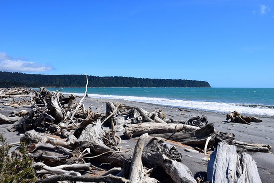 Westland National Park (Te Wahipounamu), New Zealand: playa