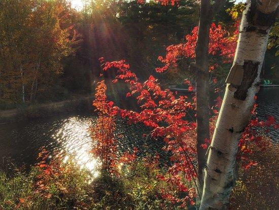 Grenville-sur-la-Rouge, Canada: photo3.jpg