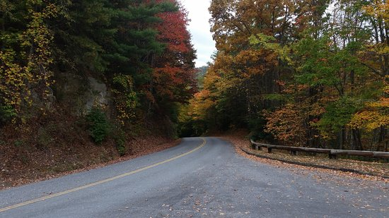 Great Smoky Mountains National Park, NC: Road to Cataloochee Valley