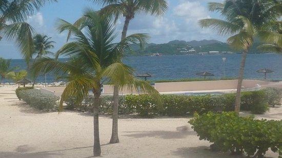 Baie Nettle, St-Martin / St Maarten: Studio sobre la playa.