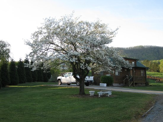 Elizabethton, TN: Front of Cabin 7(handicap accessible)