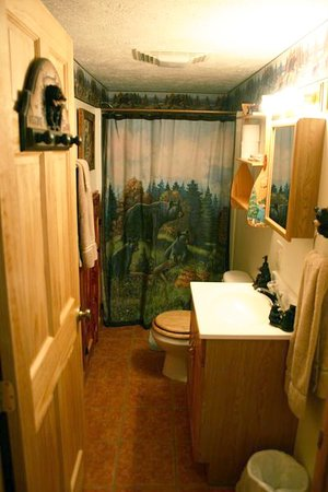 Elizabethton, TN: lower bathroom from Cabin 9