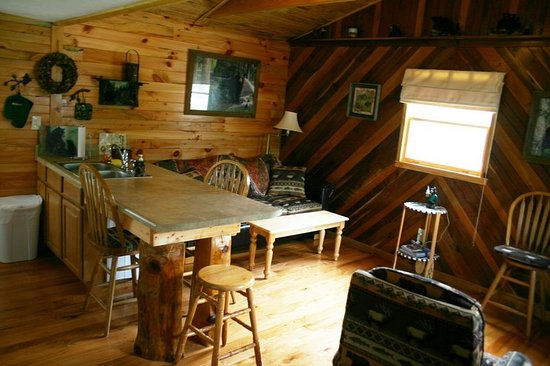 Elizabethton, TN: living area for Cabin 9